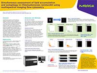 Merck:/Freestyle/BI-Bioscience/Cell-Analysis/amnis/Algae-poster-amnis-MERCK-06122016.jpg