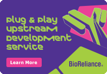 Plug-&-Play-Upstream-Development-Service