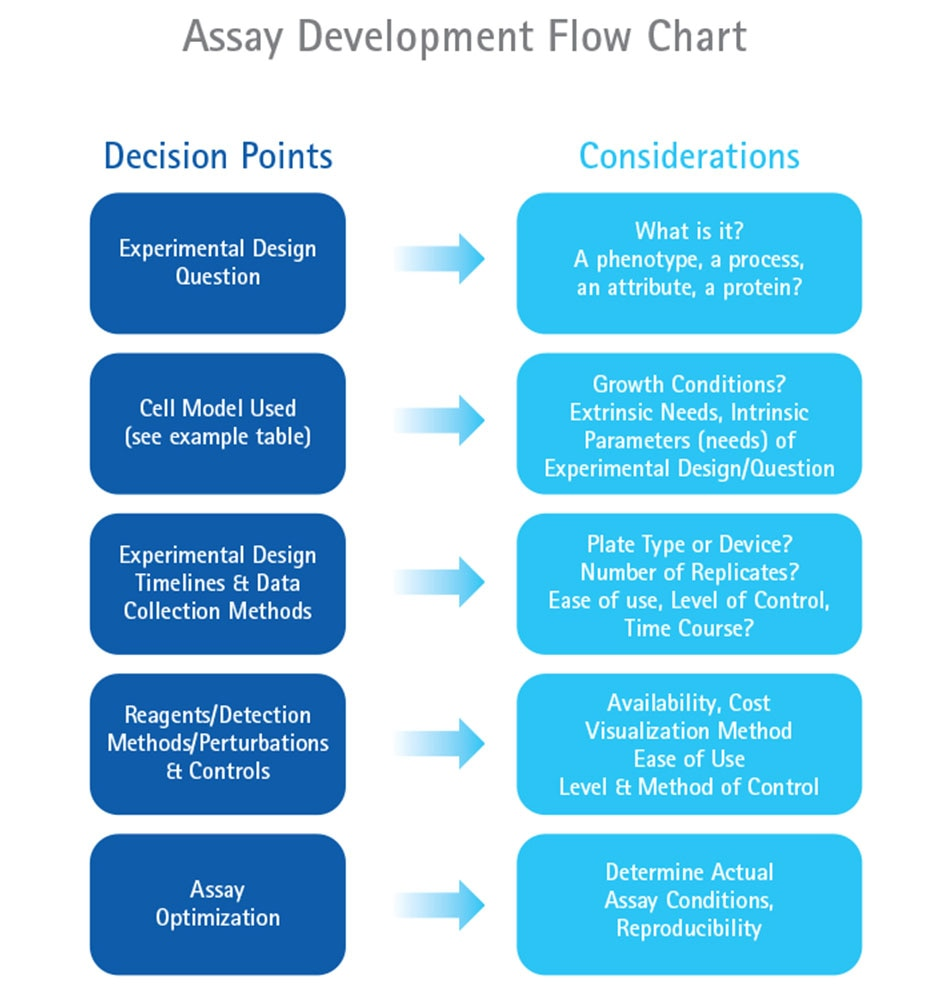 Assay Development Flow Chart
