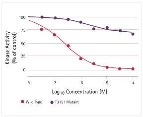 Concentration of wild type and mutant kinase activity.