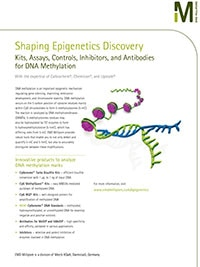 Merck:/Freestyle/BI-Bioscience/Genomic-Analysis/Epigenetics/shaping-epigenetics-cover.jpg
