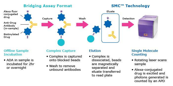Merck:/Freestyle/BI-Bioscience/Protein-Detection/singulex/Immunogenicity Page Image_700x350.png