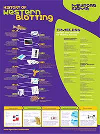 Merck:/Freestyle/BI-Bioscience/Protein-Detection/snap/history-western-blotting-poster-200px.jpg