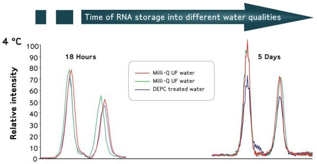 Water For Nuclease Free Applications Impact Of Water Application Water Purification Merck